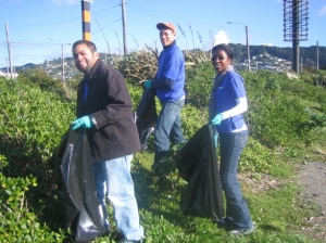 No bush left untidy - All part of the Deloitte Beach Clean Up of Wellington Harbour.